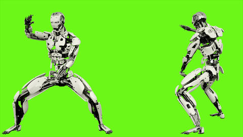 Robot android is shows your fighting skills Realistic looped motion on green Animation