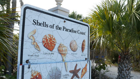 Shells sign at the entrance of the Barefoot Beach State Preserve Live Action