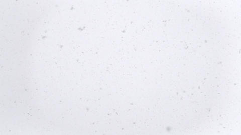 Snow falling at winter day, slow motion ビデオ