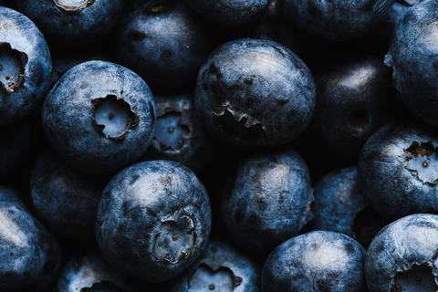 Fresh blueberry with water drops フォト