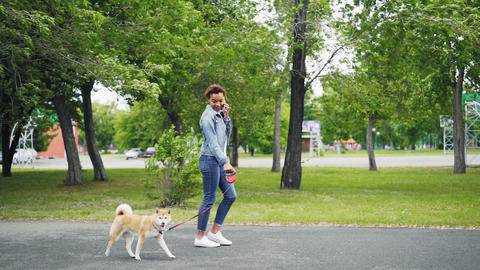 Slow motion of happy mixed race girl walking puppy in park and talking on mobile Footage