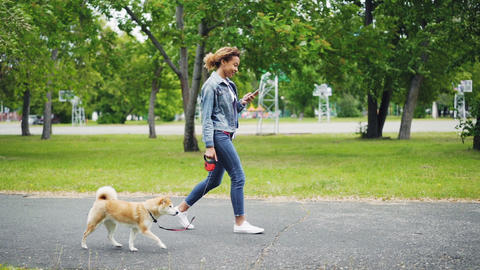 Slow motion of cheerful African American girl walking her pedigree dog in city Footage