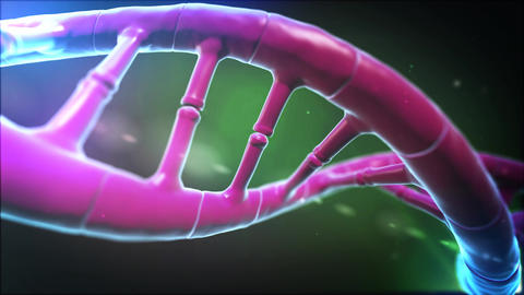 DNA LOOP 4K v3 Animation