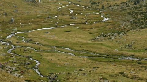 Landscape of a mountain meadow Archivo