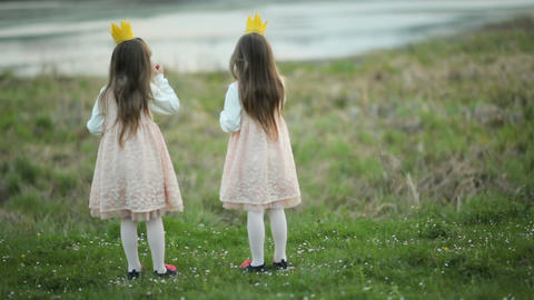 Two little princesses stand on a green meadow. Two little girls twins in smart Live Action