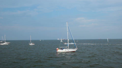 Sailing boats out in sea on sunny clear day with speedboat running between them Footage