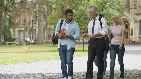 Mixed-race students and teacher walking in park and talking, higher education Footage