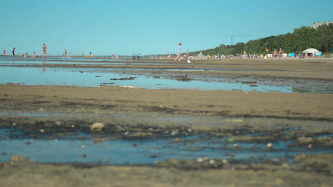 Close-up of dirty waste water and polluted sand with people relaxing nearby Footage