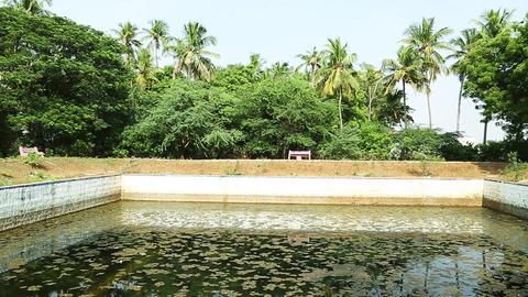 Temple pond, Exterior Hindu Temple Pond Live Action