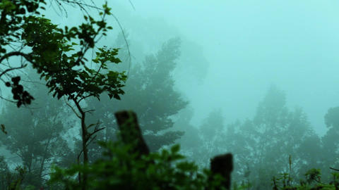 clouds pass over mountains green hillside with trees in cloud scraps moving fog Live Action