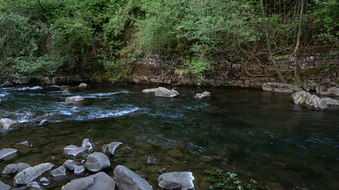 Limentra stream, close to the Chicon watermill in Pavana, Italy Live Action