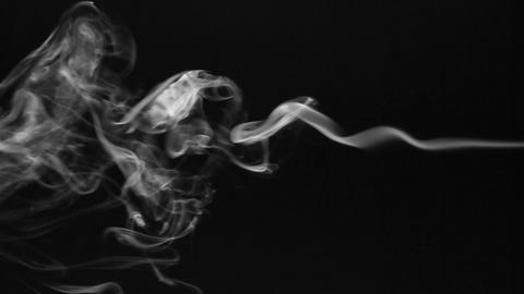 Beautiful twists of white smoke on a black background Live Action