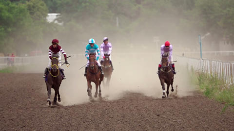 Four Riders on Horse Races. Slow Motion GIF