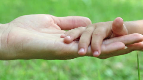 Mother and daughter hands on green background. Hand in hand Live Action