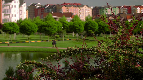 Beautiful view of the German village. Green square with a lake and views of the Footage