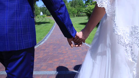 stabilizer, close-up, bride and groom walking in the park holding hands Footage