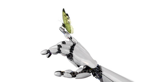 Caggabe Butterfly Lands on the Robot's Hand Animation