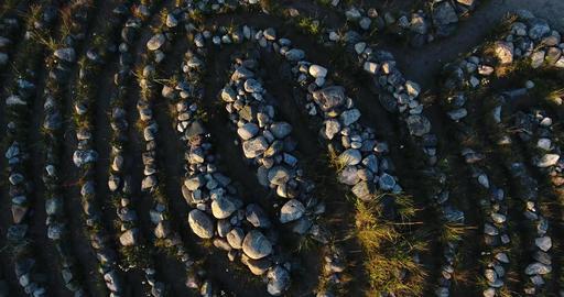 Arkhangelsk region, dron, spiritual Live Action