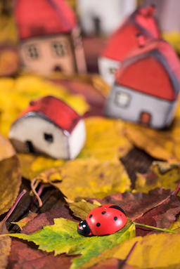Painted toy houses on autumn leaves Fotografía