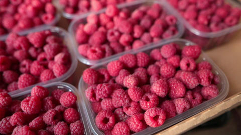 A lot of selective organic raspberries in plastic boxes inside a cardboard box Footage