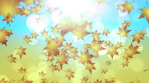 Cool Autumn Leaves Falling Animation