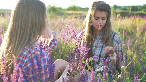 Girls are sitting on the field with lilac flowers Fotografía