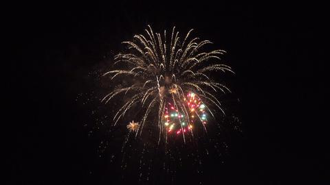Beautiful festive salute in night sky 영상물