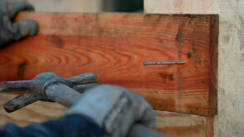 A carpenter fixing a nail with his hammer Stock Video Footage