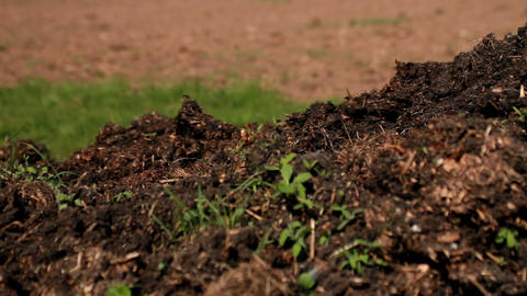 Compost Stock Video Footage