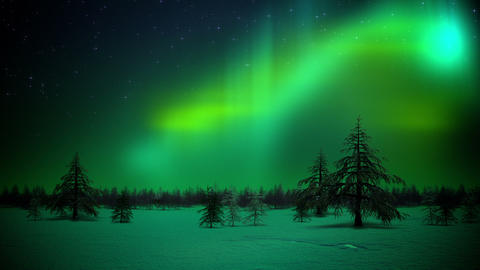 Polar lights in forest loop Stock Video Footage