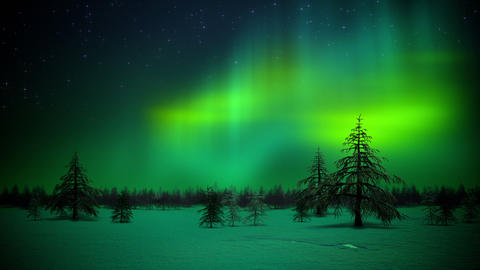 Polar Lights In Forest Loop stock footage