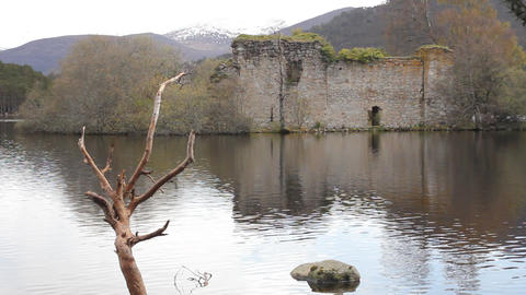 View of the Castle in the Rothiemurchus forest Stock Video Footage