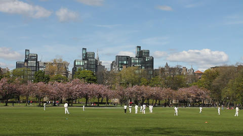 People playing a cricket match in the park Footage
