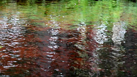 surface water Stock Video Footage