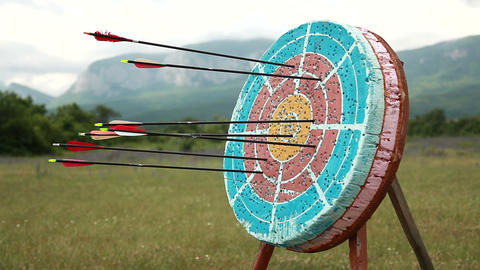 Target for Archery Live Action