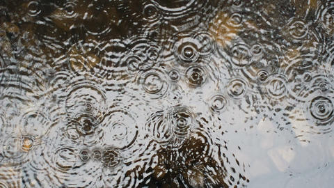 Warm summer rain drops rippling in a puddle Footage