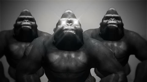 Gorilla Bodyguards Full HD VJ Loop Animation