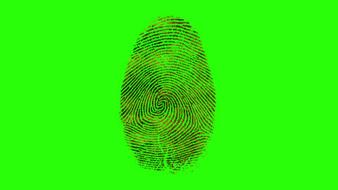 Various Fingerprints Running on a Green Screen Background Footage