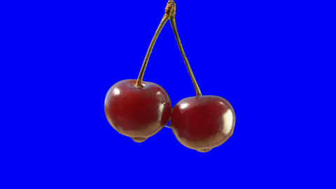 A pair of cherries on a blue background Footage