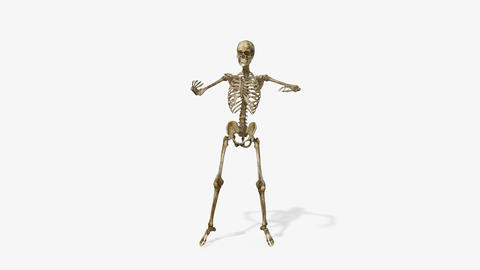 skeleton dancing hip hop, Animation, Alpha Channel ,isolated Animation
