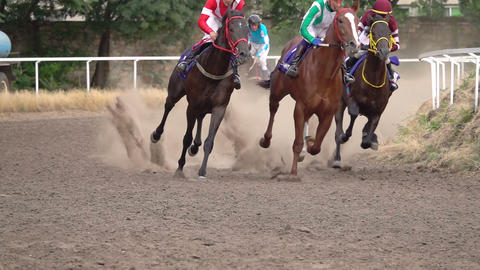 The Horses with the Jockeys at the Racetrack Stock Video Footage