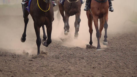 The Feet of the Horses at the Racetrack Footage
