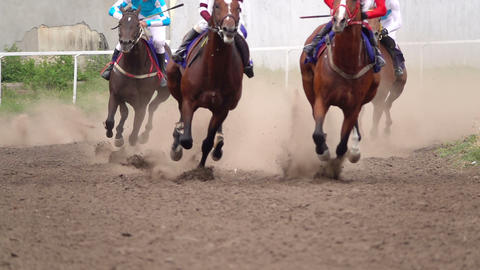 The Horses with the Jockeys at the Racetrack Live Action