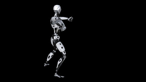 Robot Commander Animation