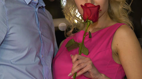 Couple hugging, nuzzling, blond girl smelling red rose, passionate relationship Footage