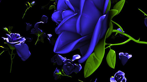 Falling Blue Roses On Black Background CG動画