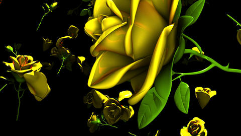 Falling Yellow Roses On Black Background Animation