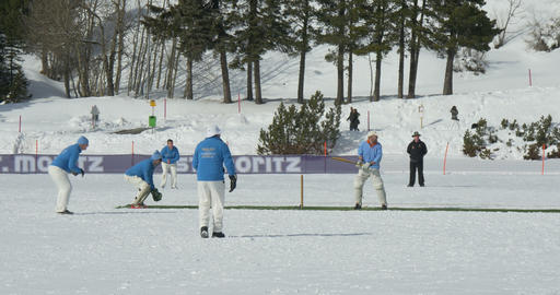 cricket on ice batting Live Action