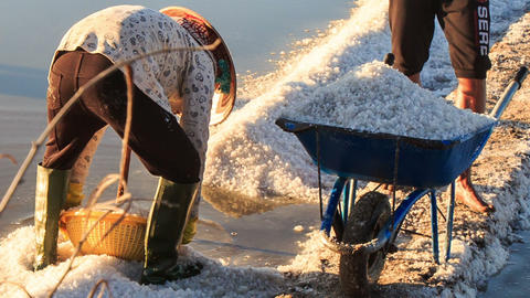 Closeup Man Fills Salt with Basket into Wheelbarrow Footage