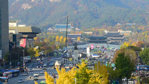 Autumn in Seoul City at Gyeongbokgung palace in Seoul, South Korea Live Action